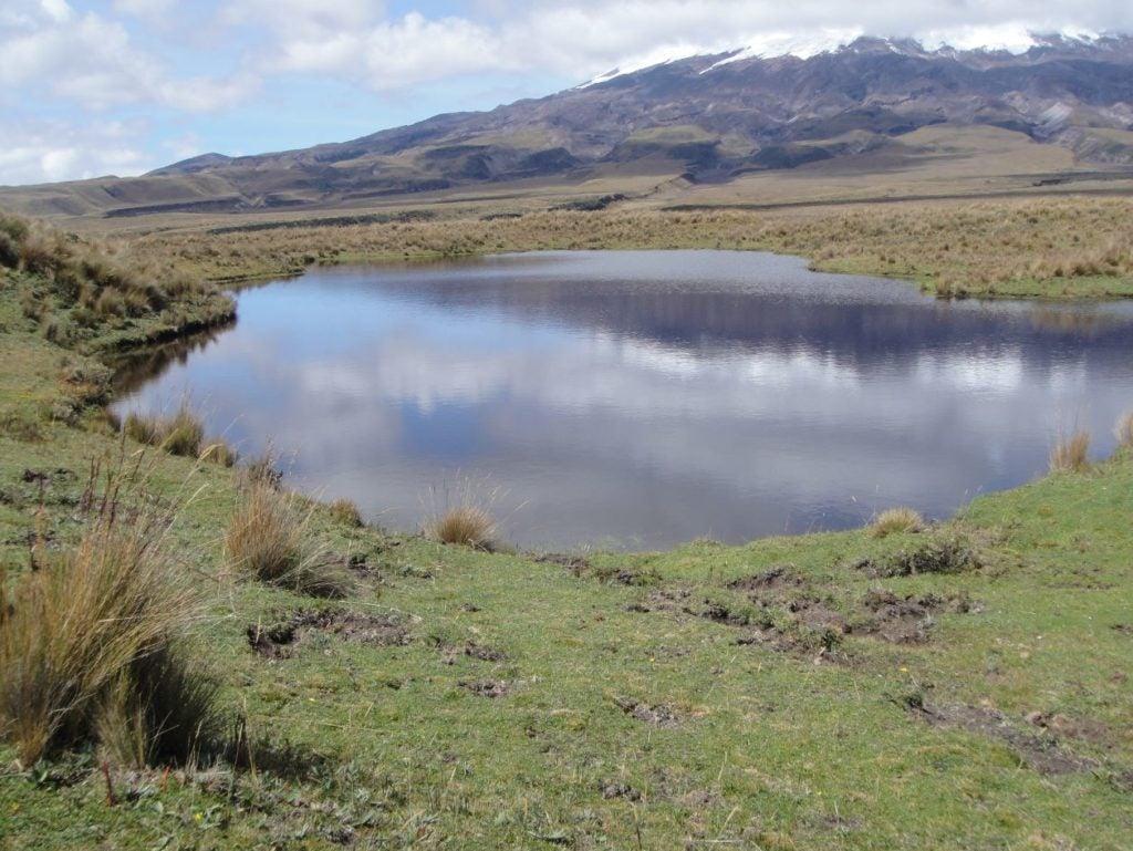 Invertir en la protección de cuencas de Quito