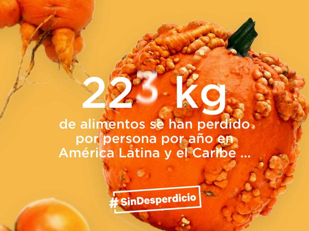 ¿Cuánta comida desperdicias en un día? Hacia una región #SinDesperdicio