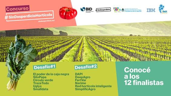 12 soluciones para salvar las hortalizas: finalistas del concurso #SinDesperdicioHortícola