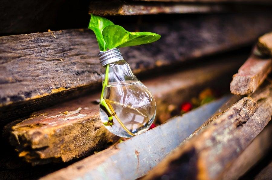 Tecnología e innovación para llevar agua y saneamiento a todos en América Latina y el Caribe