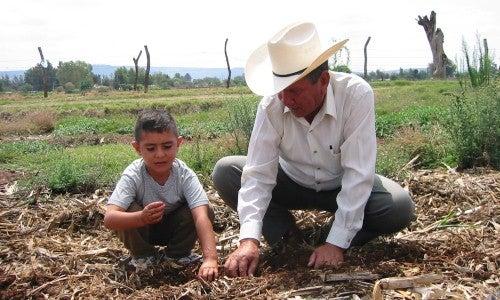 ¿Cuál es uno de los principales factores para la continuidad de las empresas familiares en América Latina?