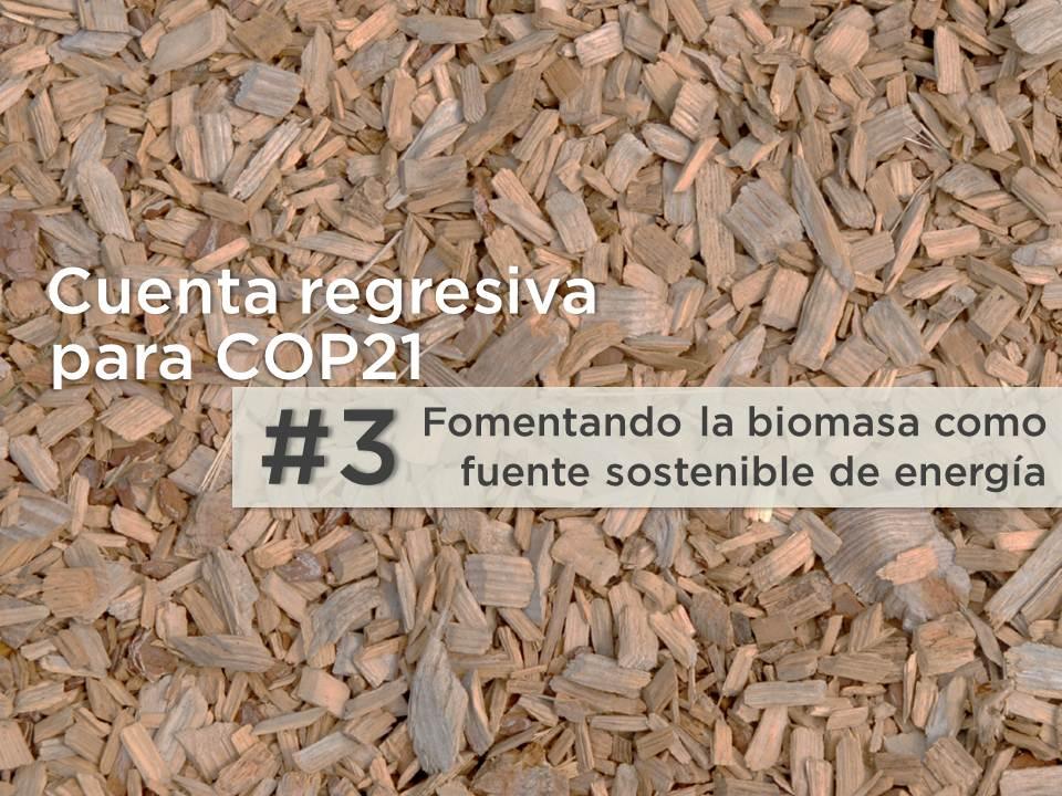 5 razones para reconsiderar la biomasa en Latinoamérica