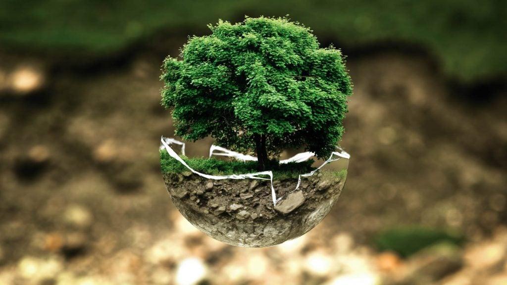 Tres tendencias para alimentar el planeta