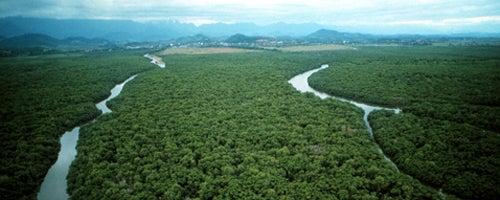 A Amazônia e as mudanças climáticas