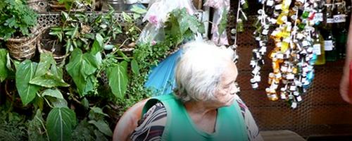 Brasil reparte benefícios da biodiversidade