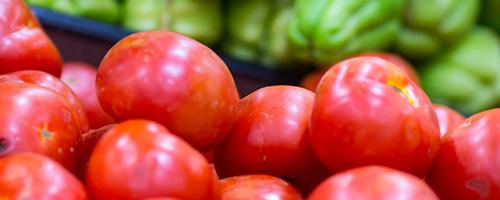 70% dos alimentos consumidos no mundo são produzidos pelos pequenos produtores rurais