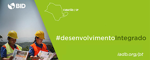 Recuperação da Mata Atlântica na Serra do Mar: muitos projetos em um