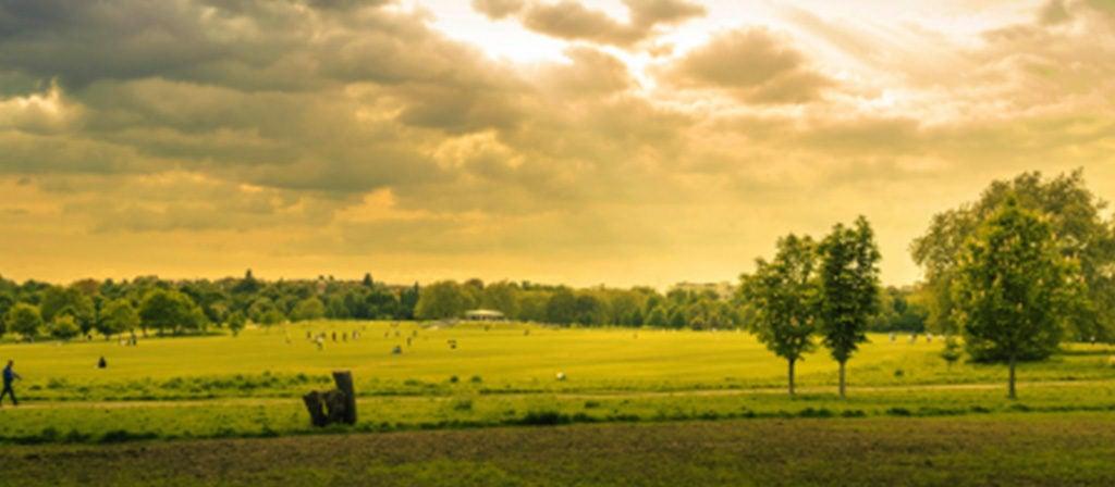 Agricultura climaticamente inteligente: garantia de comida à mesa