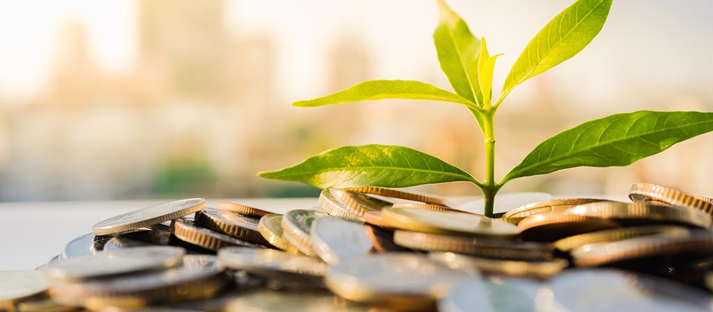 Quatro formas de impulsionar a inovação financeira para a sustentabilidade