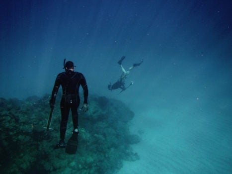 How we can save Caribbean Coral Reefs and why we should