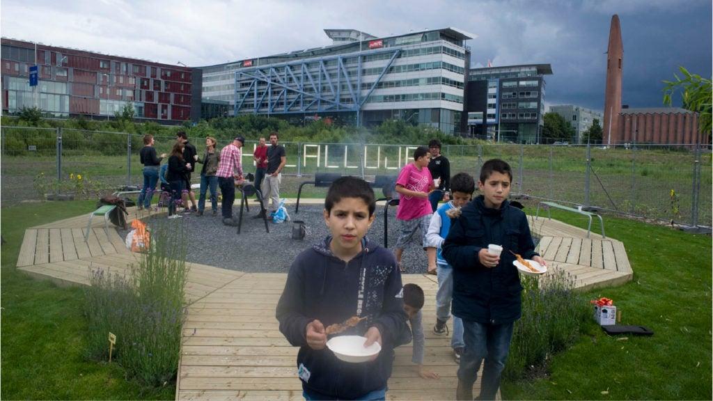 Cómo el arte y las gallinas pueden transformar una ciudad: El caso de Kolenkit en Amsterdam