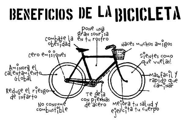 5 razones por las que vale la pena invertir en las bicicletas