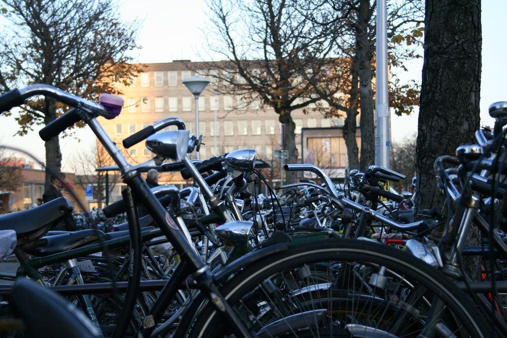 ¡A sacar la bici!: Únete al Día mundial sin auto
