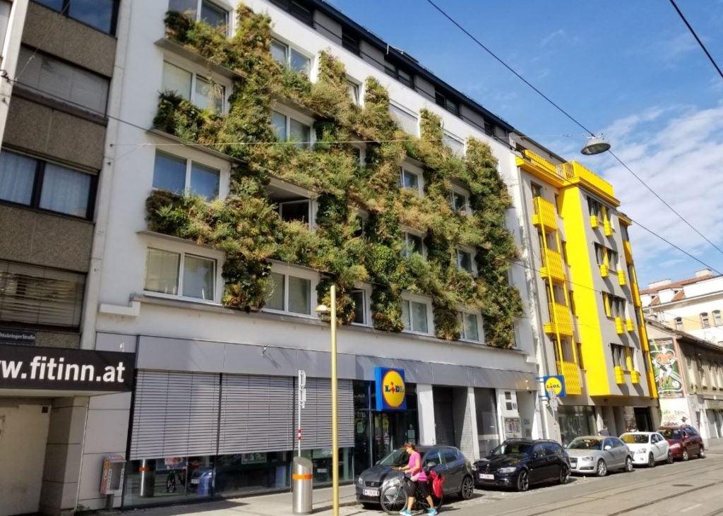 Vienna Exchange Program: Municipal programs to mitigate Urban Heat Island Effect