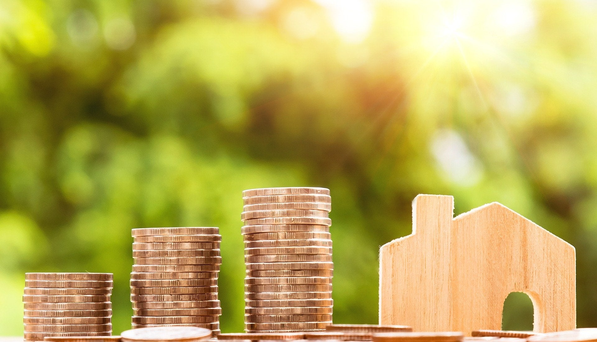 Dinero. Pixabay. annca. Pixabay License.