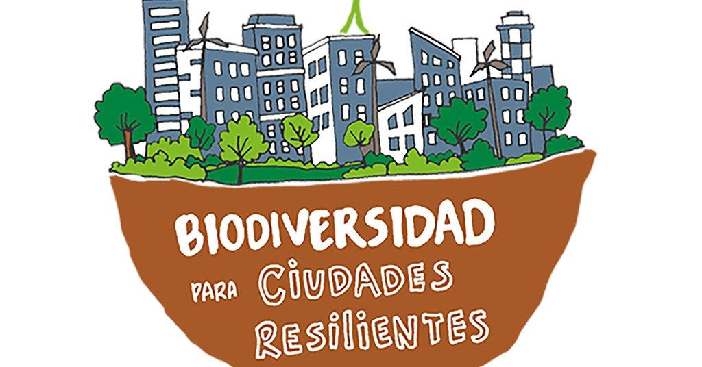 La hoja verde del día después del COVID-19: biodiversidad para ciudades resilientes - Webinar Red de Ciudades BID