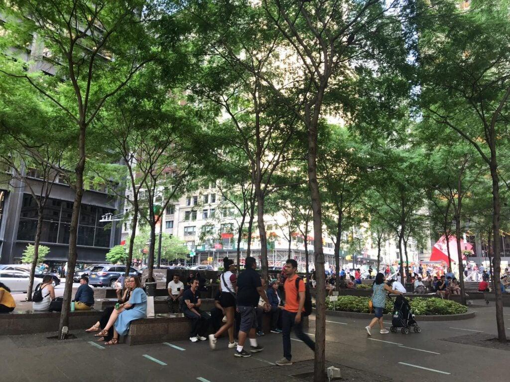 SOURCE: ZUCCOTTI PARK, NYC 2019. IDB PHOTO BY: ALESSANDRA RICHTER