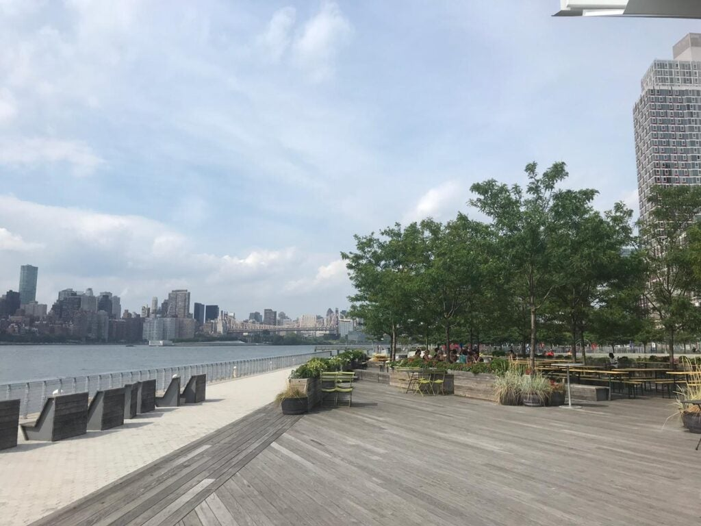 SOURCE: HUNTER'S POINT, SOUTH PARK, LONG ISLAND CITY, QUEENS, NY 2019. IDB