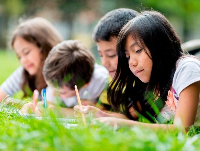 Una crisis de aprendizaje que ya no sorprende a nadie