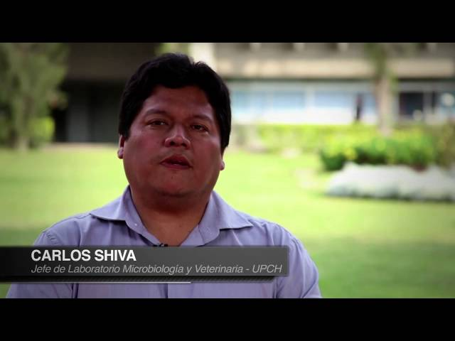 Semilla pública de inversion: una fórmula para la innovación en Peru