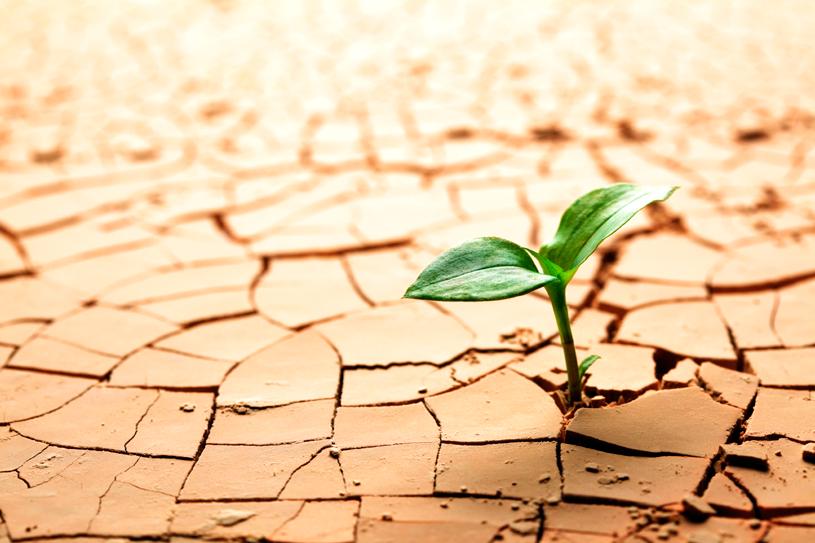 ¿Practicamos agricultura climáticamente inteligente?