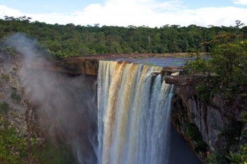 Guyana comprometida con la conservación de los bosques tropicales