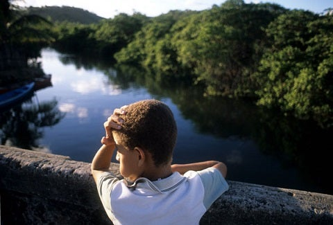 Improving the Water Quality of the São Domingos River