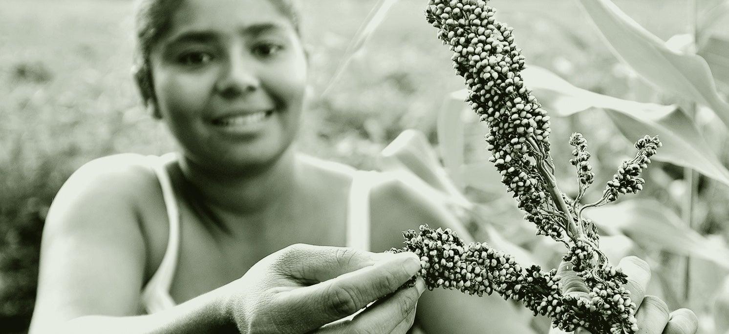 BID recuperación de economías locales para el post conflicto, Colombia