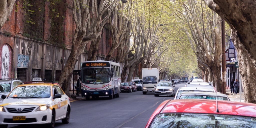 Buses y coches