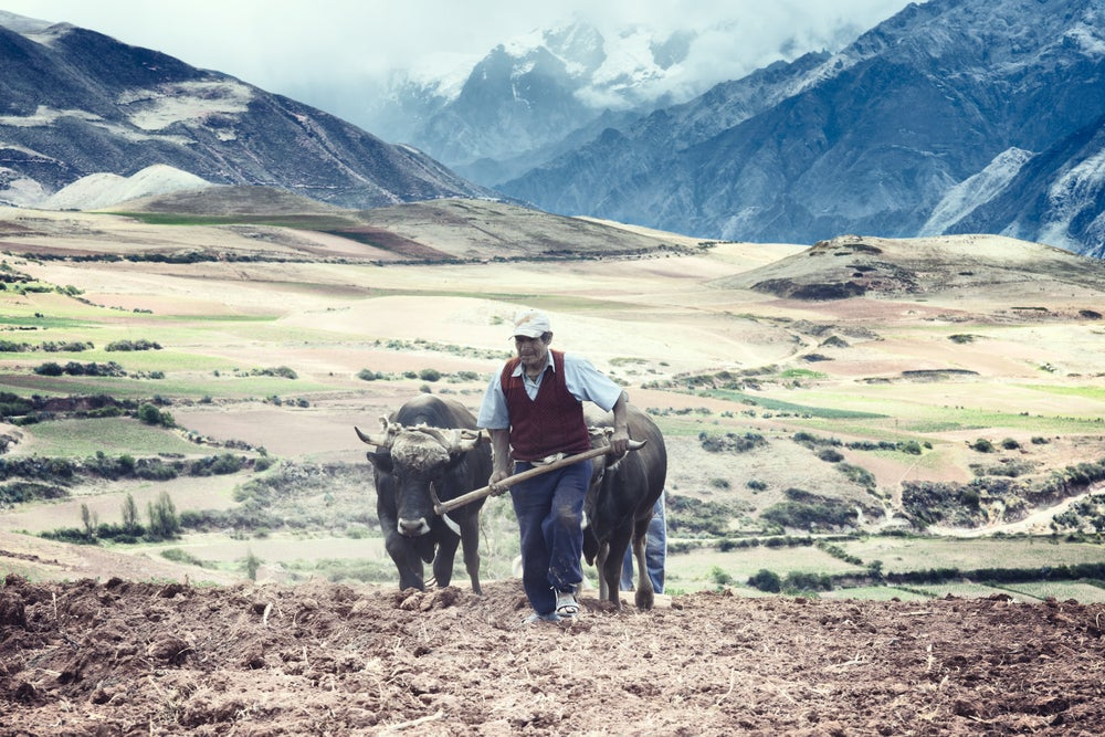 Can Small Farmers Adapt to Climate Change Shocks?