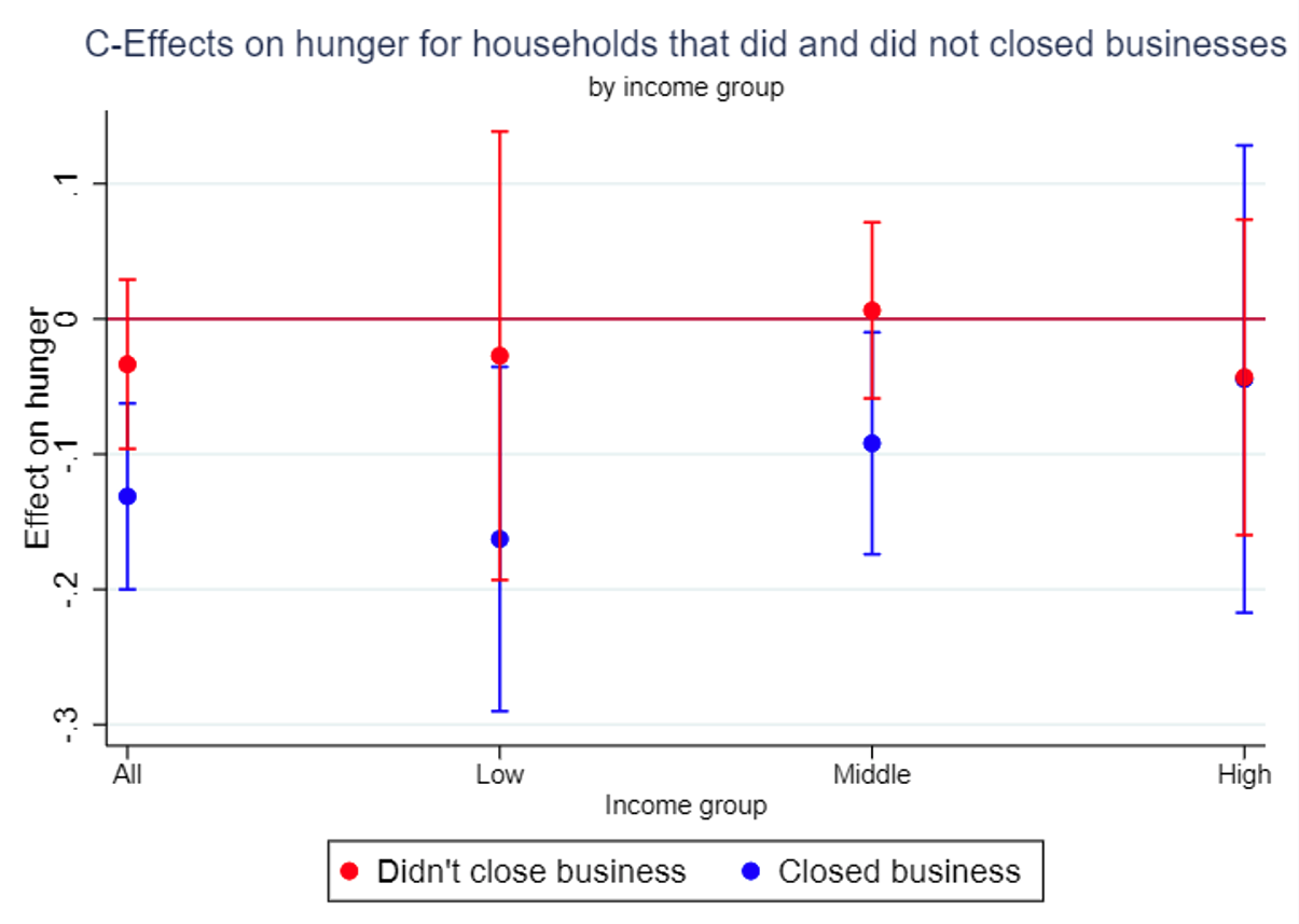 Effects of the program on hunger, by income and exposure to business closures