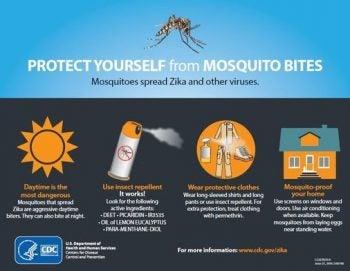 La Lucha Contra El Zika La Necesidad De Mensajes Sostenidos
