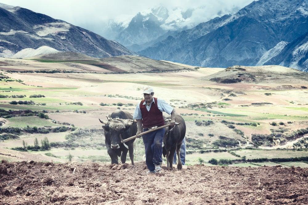 Los pequeños agricultores enfrentan enormes desafíos para adaptarse al cambio climático