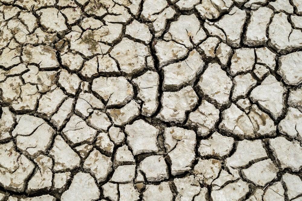 ¿Pueden los ciudadanos latinoamericanos cambiar la política climática?