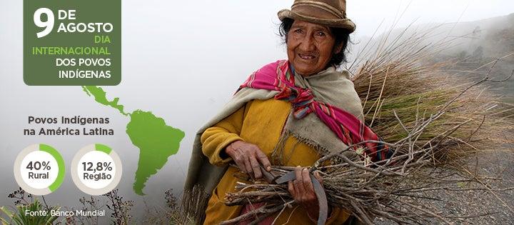 Use ou Perca: a difícil decisão dos povos indígenas sobre suas terras