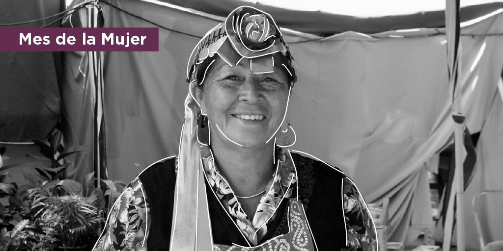 La mujer indígena y la igualdad: una perspectiva a dos voces