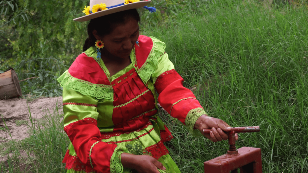 Gender mainstreaming in Bolivia