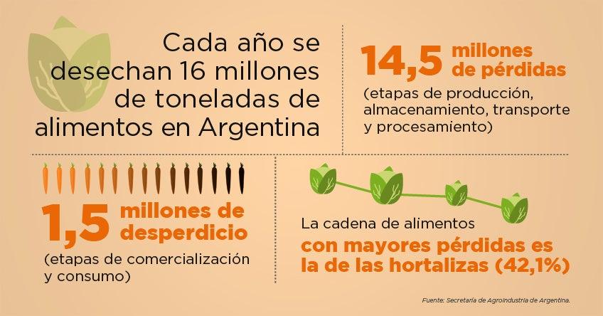 zanahorias desechadas se transforman en productos de alto valor agregado