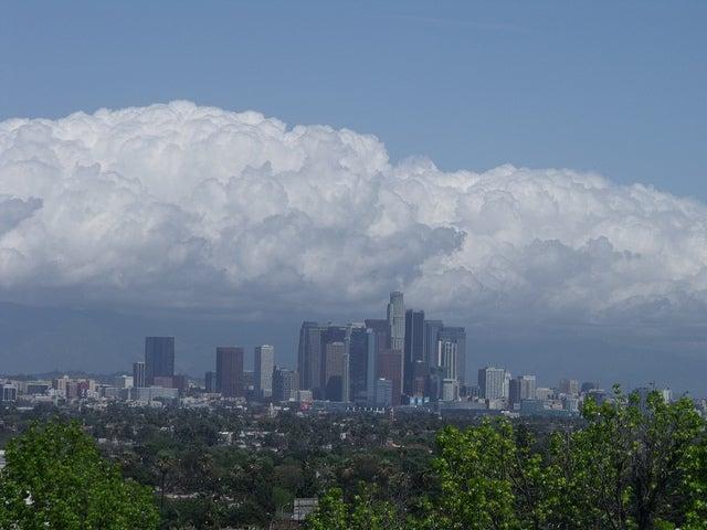 ¿Cómo hizo Los Angeles para bajar su tasa de homicidios en un 50%?