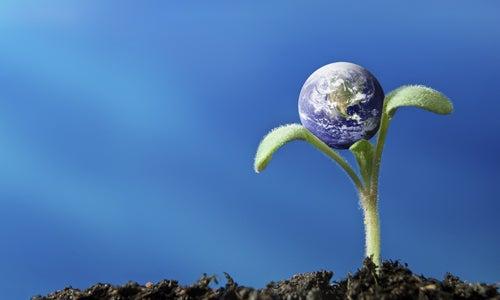 Un mundo 100% renovable es posible
