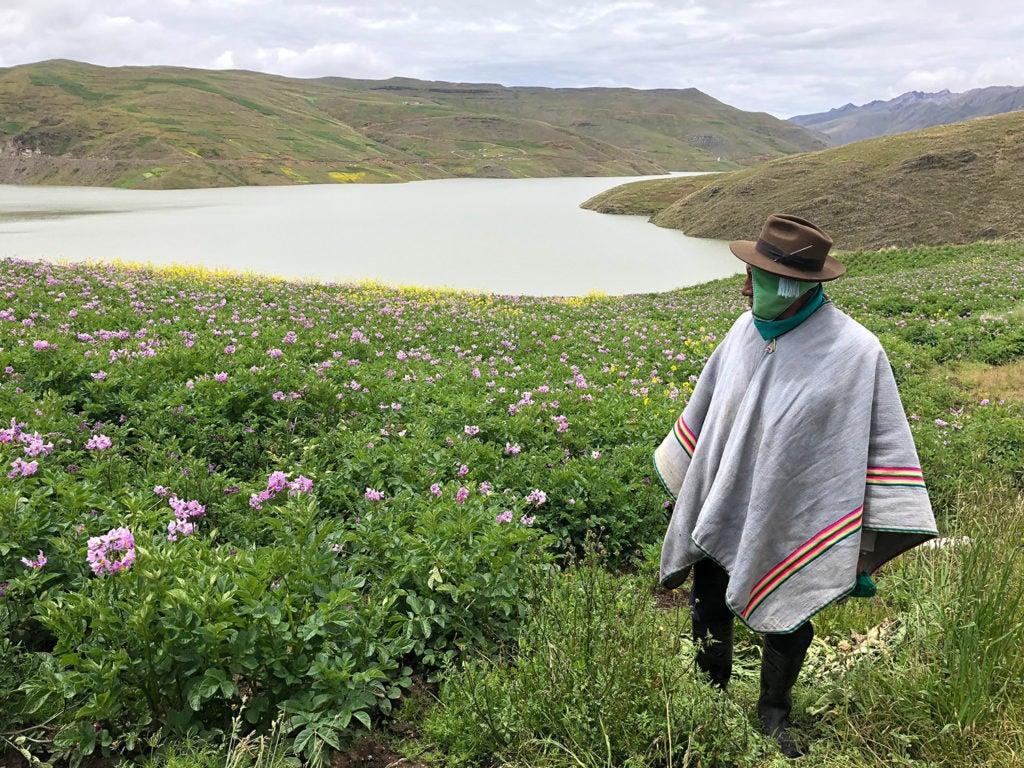 Horticultura y restauración de modos de vida a 4.000 metros de altura