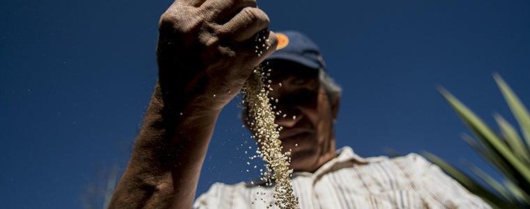 Agricultores familiares, más necesarios que nunca