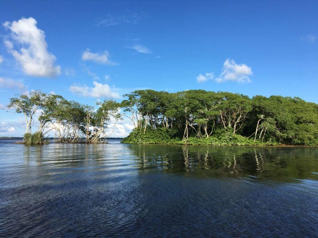 De Manglares, Pueblos y Pesca en la Moskitia