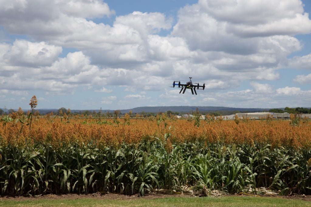 Why don't you buy a flying a car? Or how that decision is like adopting agricultural technologies.