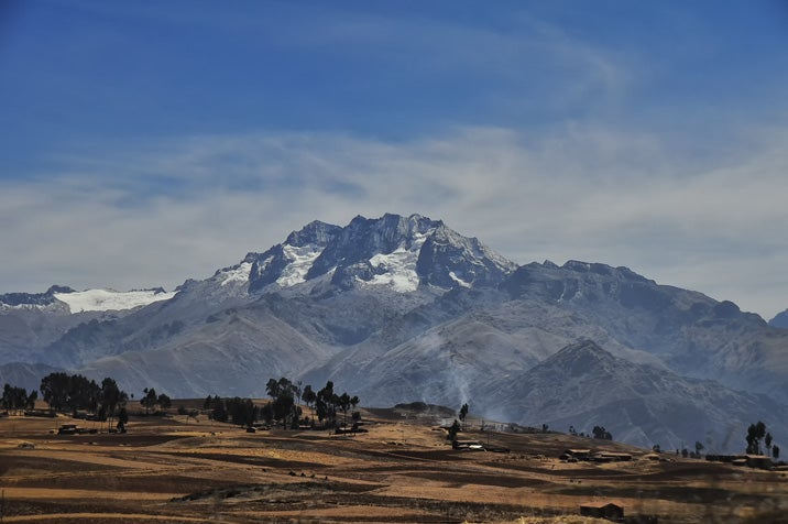 Conservation vs. growth? An evaluation in Peru shows that economic growth and environmental sustainability can go hand in hand