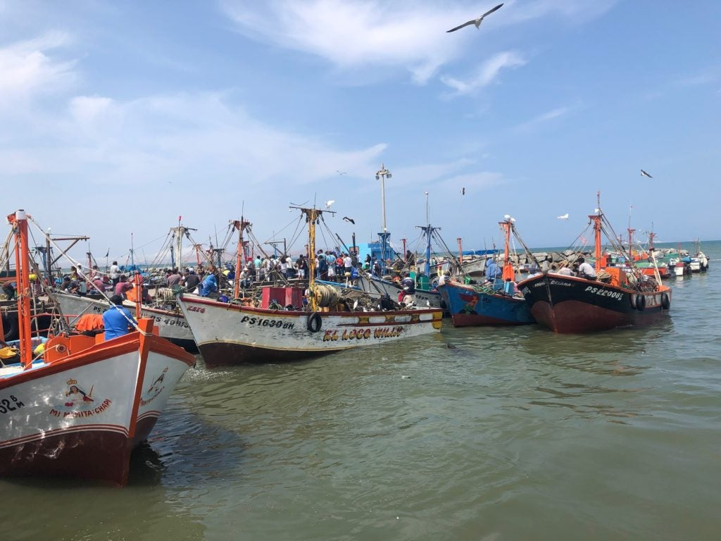 Will Peru have enough seafood in 50 years? The reason for sustainable fishing