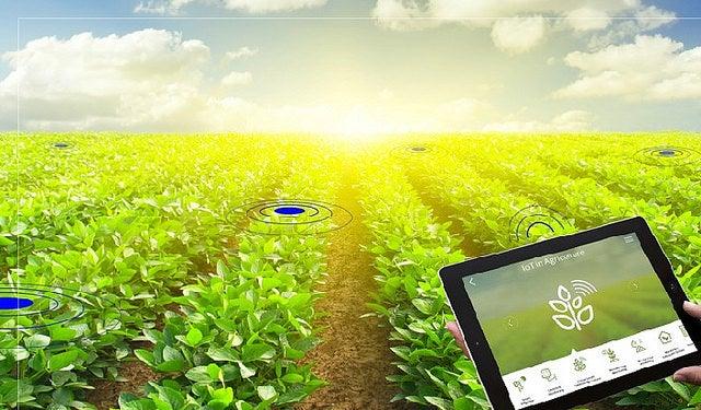 Proyecto de Mejoramiento del Sistema de Información Estadística Agraria