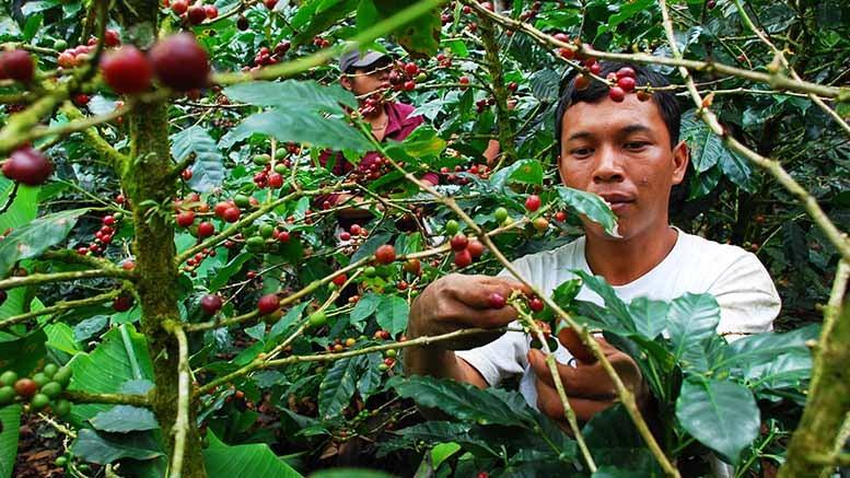 Qué pasa con el empleo joven en América Latina