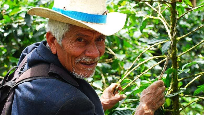 América Latina y el Caribe: una región que envejece rápido