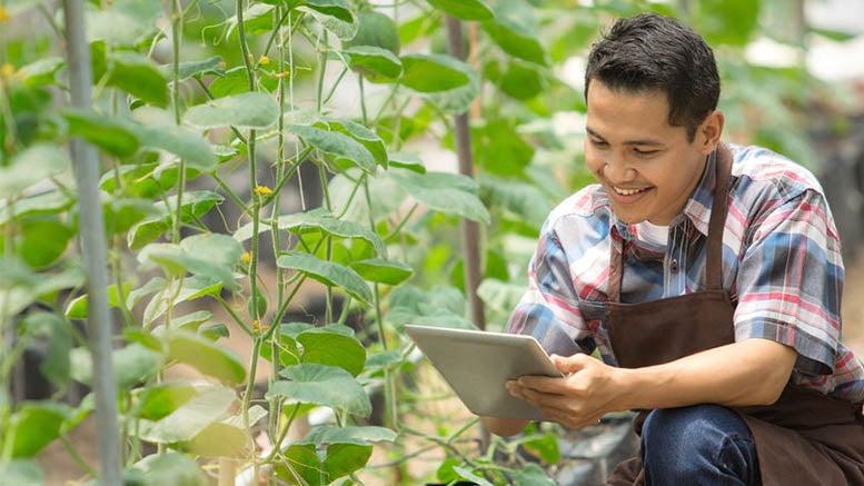 ¿Qué le depara el futuro al empleo agrícola?